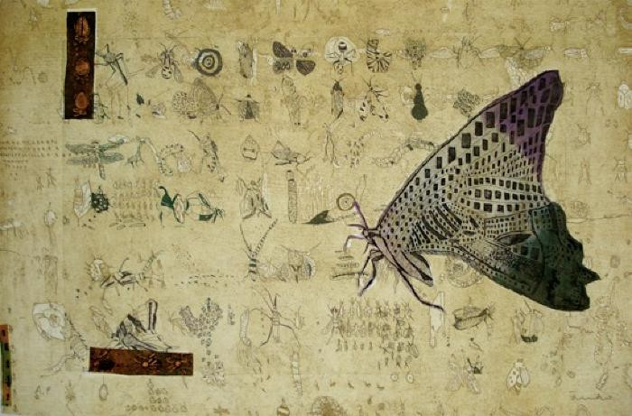 Profile:Butterfly by Fumiko Toda