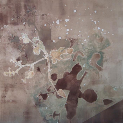 Eucalyptus Shadows by Amber George