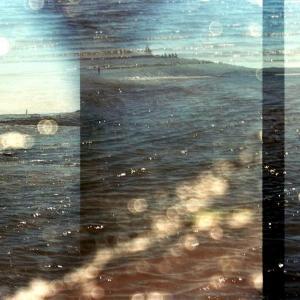 McNab's Island #56 by Leah Oates; by Leah Oates