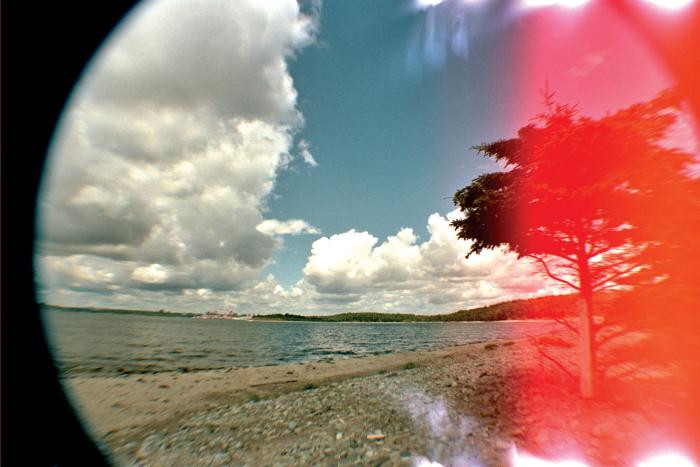 McNab's Island #193 by Leah Oates