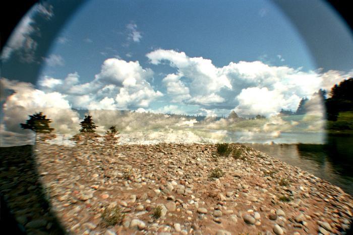 McNab's Island #196 by Leah Oates