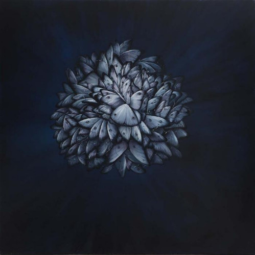 Transmigration  by Allison Green