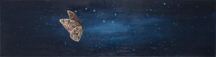 Celestial Navigation by Allison Green