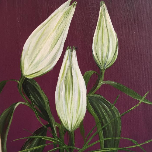 Garden Study 1 by Allison Green