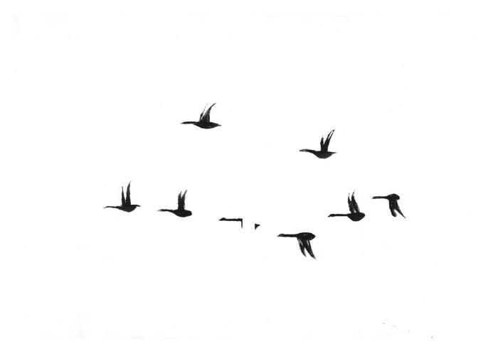 Geese by Rachel Burgess