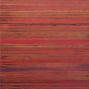 Sedona by Pat Badt