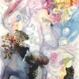 Dog Mushrooms by Barbara Strasen