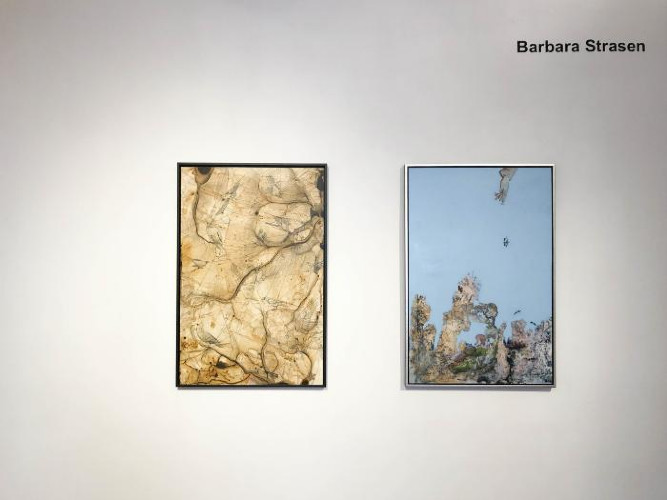 Installation View of Liane Ricci & Barbara Strasen
