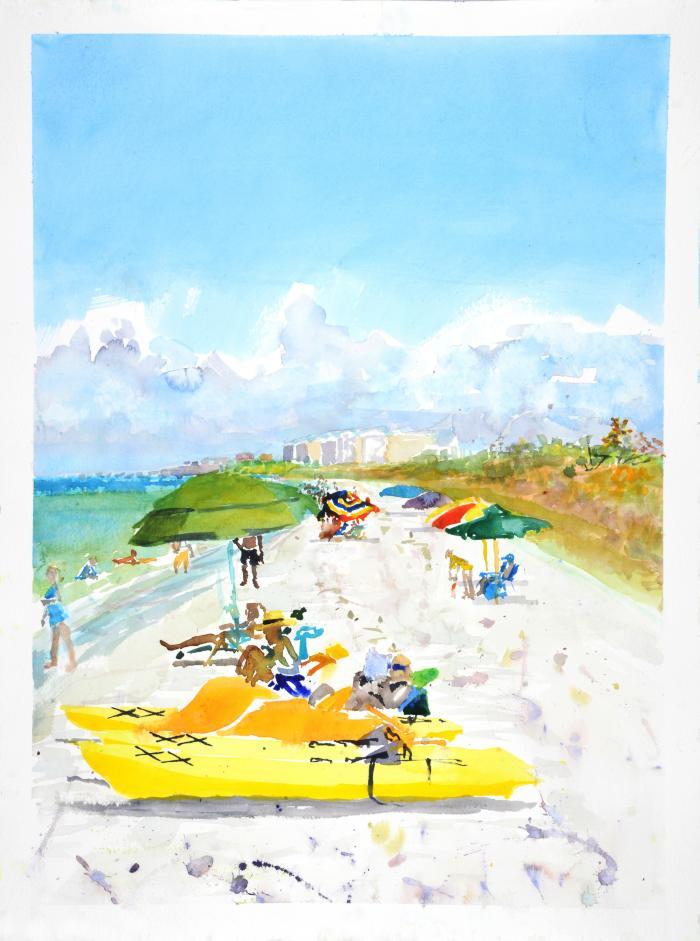 Barefoot Beach, Naples 2 by Steve Singer