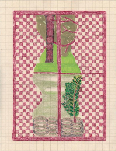 Checkered Curtains by Caroline Blum