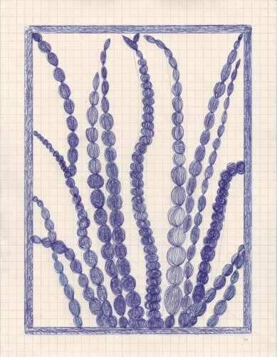 House Plant by Caroline Blum