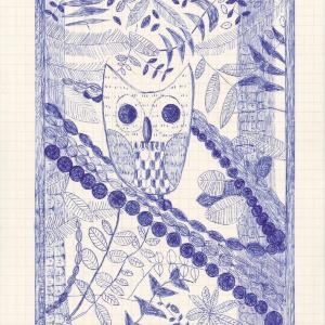 Barry the Barred Owl by Caroline Blum