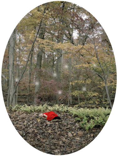Bed of Leaves by Maria Passarotti