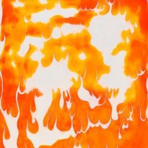 Spot Fires by Jim Denney