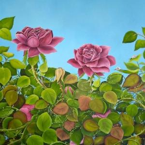 July Roses by Allison Green