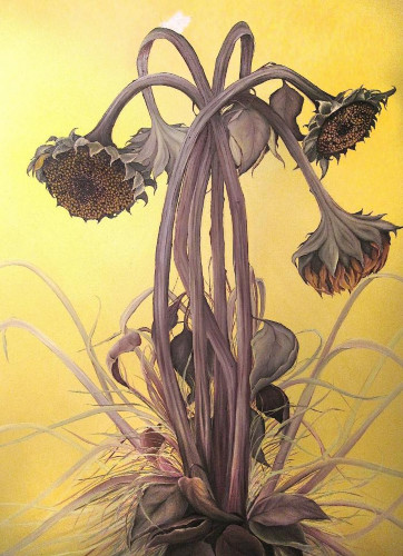 Autumn Sunflowers by Allison Green
