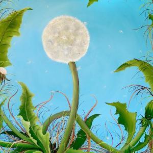 Dandelions by Allison Green