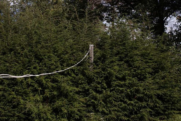 Clothes Line by Danelle Manthey