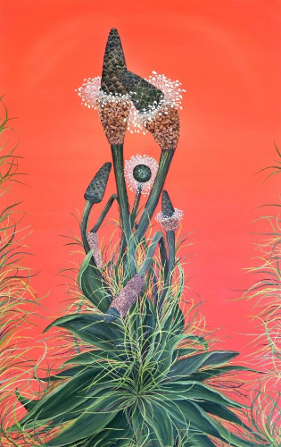 Buckhorn Plantains by Allison Green